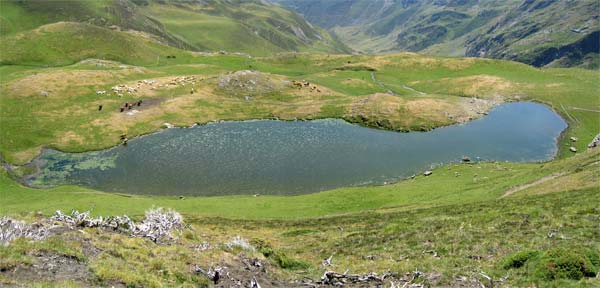 Lac d'Arizes